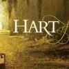 Hart of Dixie : quand New York rencontre la campagne profonde