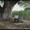 Test DVD : La Terre et l'ombre