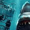 Test Blu-ray : Open water 3 – Les abîmes de la terreur