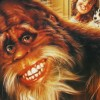 Test Blu-ray : Bigfoot et les Henderson