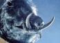Test Blu-ray : Razorback