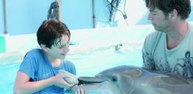 L'Incroyable histoire de Winter le dauphin : bande-annonce