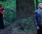 Once Upon a Time in Wonderland Saison 1 Episode 4 – The Serpent