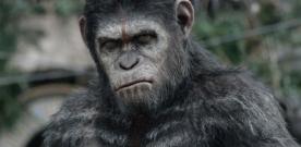 Critique : La Planète des singes : l'affrontement