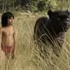 Critique : Le Livre de la jungle (Jon Favreau)