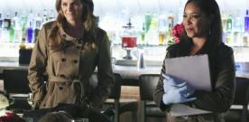Stana Katic évincée de la série Castle