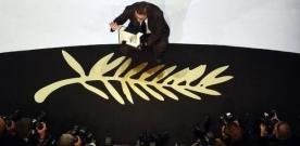 9 Palmes d'or à l'honneur aux Fauvettes