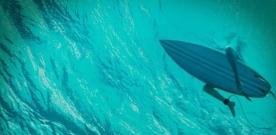 Bande-annonce : Blake Lively face aux requins dans Instinct de Survie