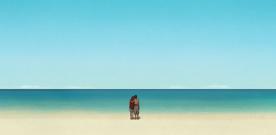 Bilan de trois mois de cinéma : un été pluvieux ?