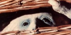 Test Blu-ray : Basket Case / Frère de sang : La saga