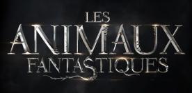 Critique : Les Animaux Fantastiques