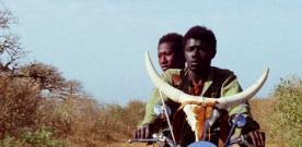Cannes 70 : quelle place pour le cinéma africain?