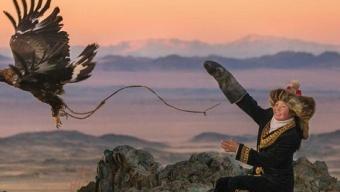 Test Blu-ray : La jeune fille et son aigle