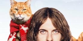 Test DVD : Un chat pour la vie